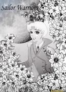 Сейлор Воины (Sailor Warriors)
