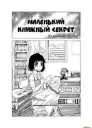 Маленький книжный секрет